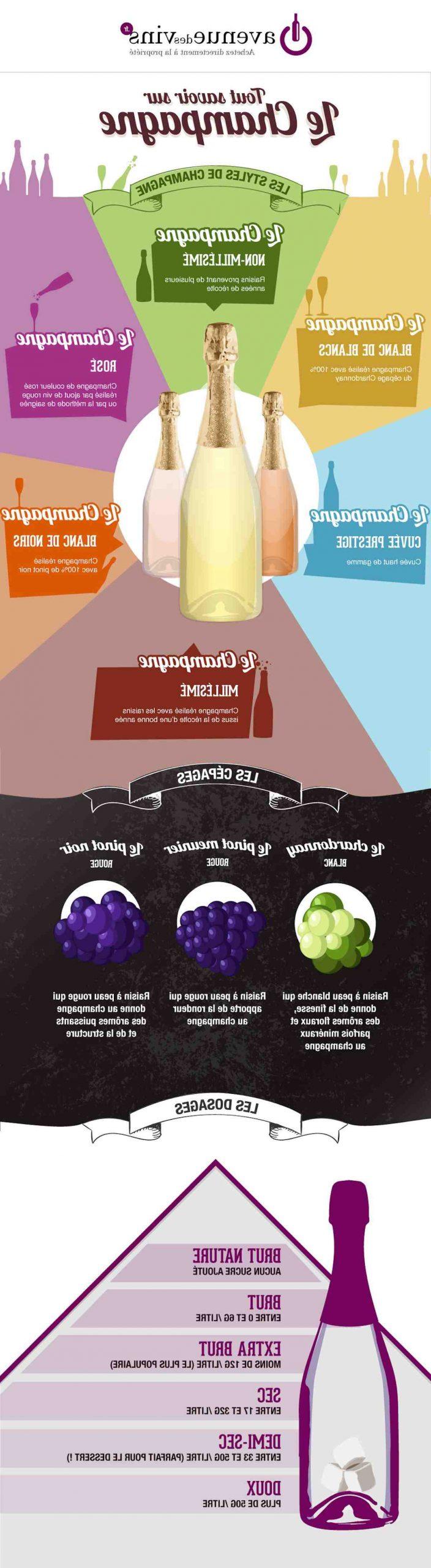 Quel raisin pour faire du vin ?